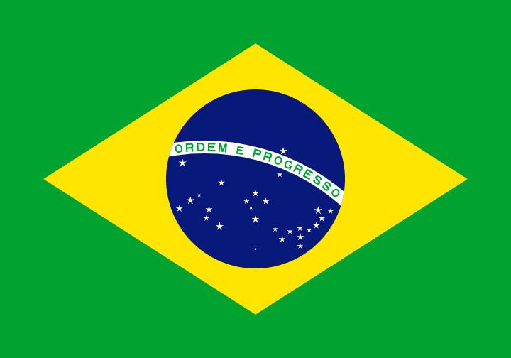 Packliste Brasilien Flagge